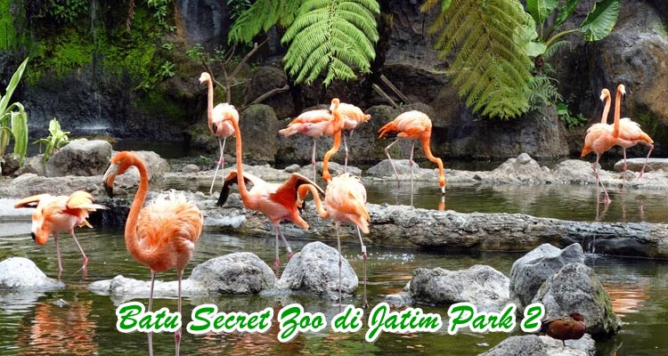 Batu Secret Zoo Jatim Park