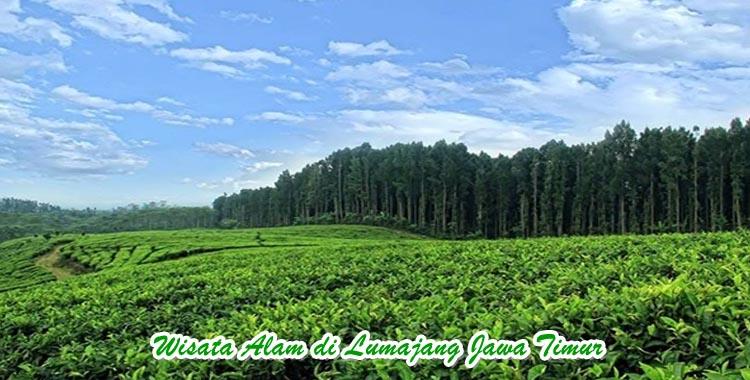 Wisata Alam di Lumajang Jawa timur