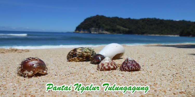 Pantai Ngalur Tulungagung