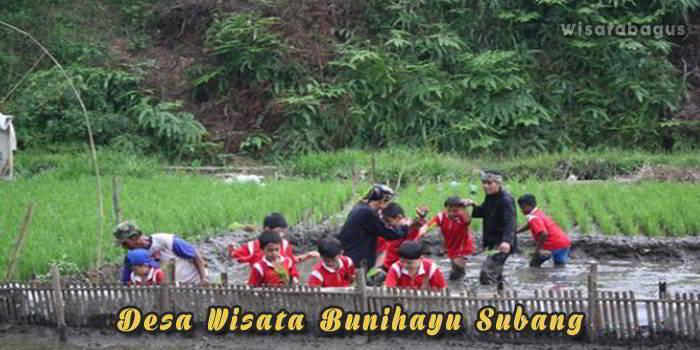 Desa Wisata Bunihayu Subang Jawa Barat
