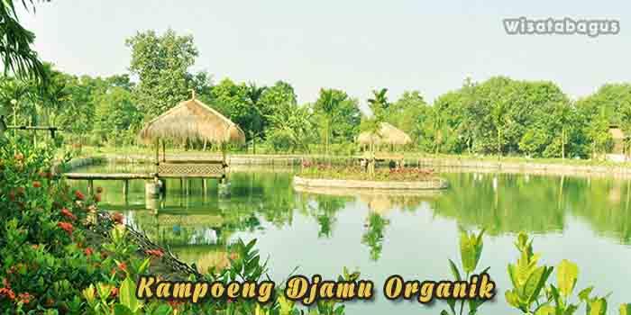 Kampoeng Djamu Organik - Tempat Wisata di Cikarang