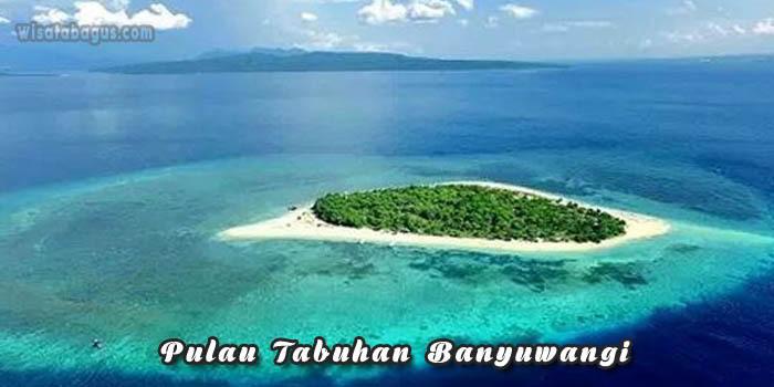 Pulau Tabuhan sebagai destinasi wisata alam Banyuwangi