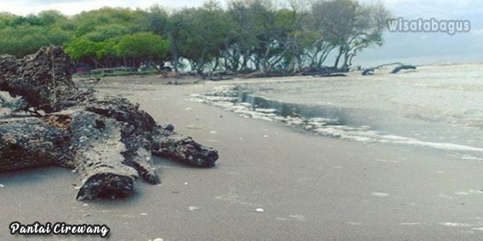 Wisata-Pantai-Cirewang