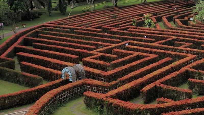 taman-labirin-di-taman-bunga-nusantara