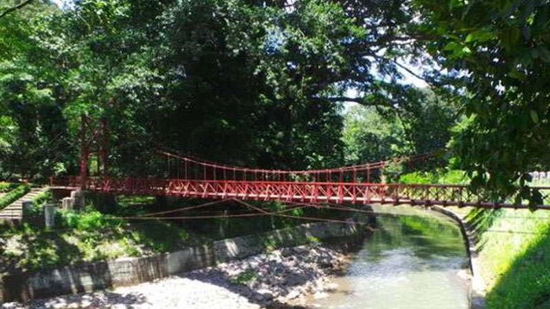 kebun-raya-bogor-jembatan-pemutus-cinta