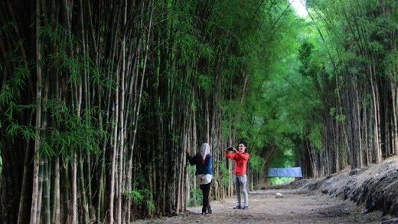 tempat-wisata-di-surabaya-hutan-bambu-keputih