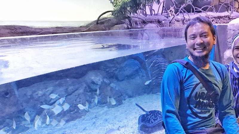 kolam-sentuh-jakarta-aquarium