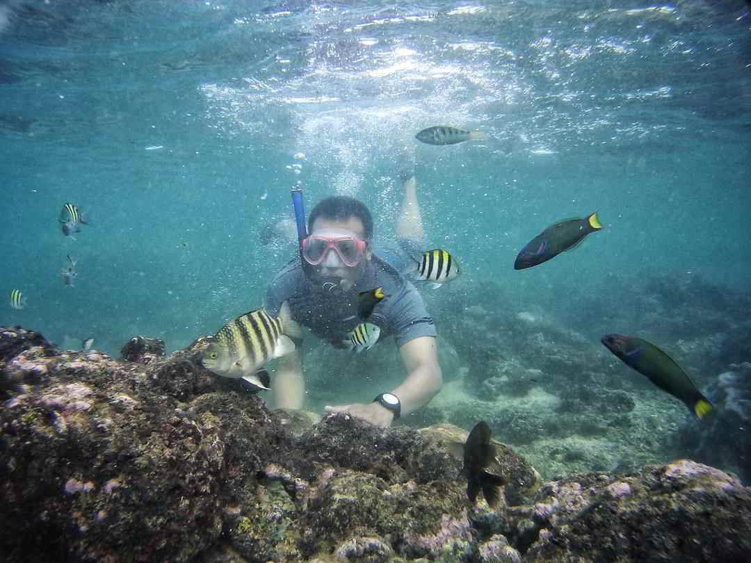 biaya-snorkelong-di-pantai-sadranan