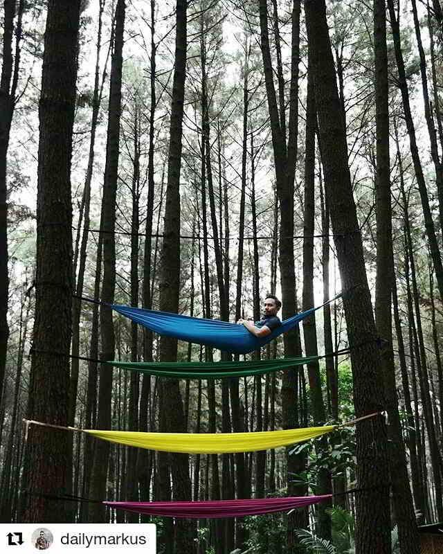 gunung-pancar-hammock