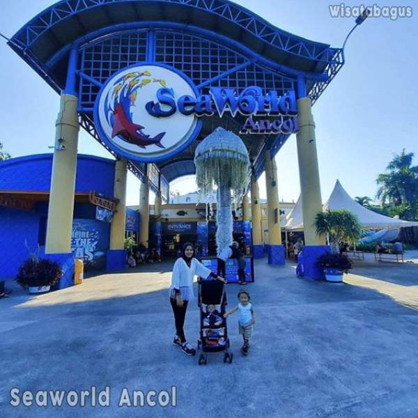 seaworld-ancol-jakarta