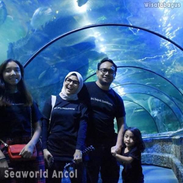 terowongan-antasena-seaworld
