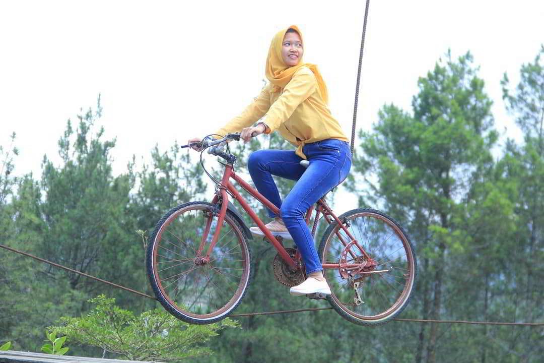 sepeda-angin-hutan-pinus-pengger