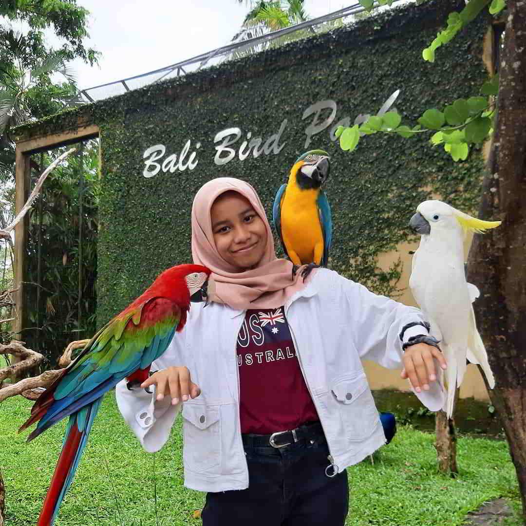 bali-bird-park-bali