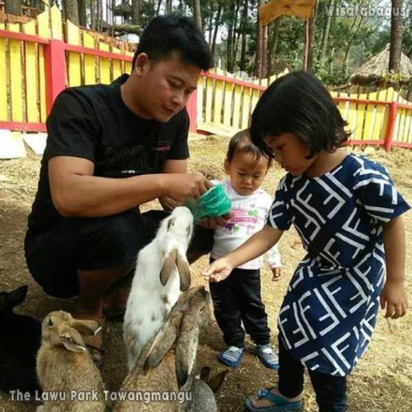 the-lawu-park-kabupaten-karanganyar-jawa-tengah