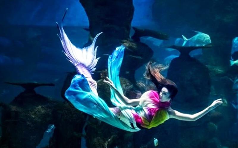 Jakarta Aquarium