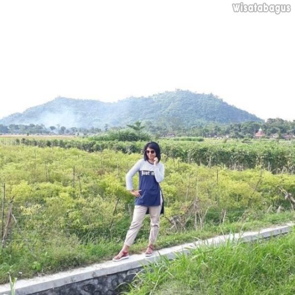 Fasilitas Negeri Dongeng